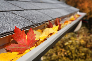 Fall leaves in rain gutter roof home improvement